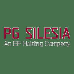 pg_silesia